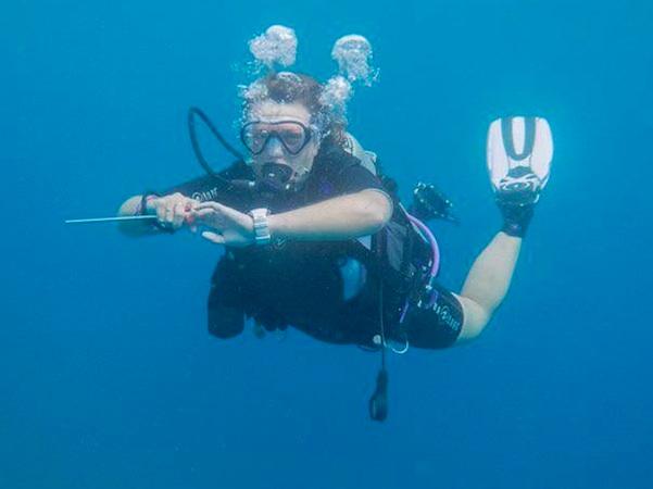 Assava Dive Resort - Koh Tao - Thailand - Assava Dive Resort
