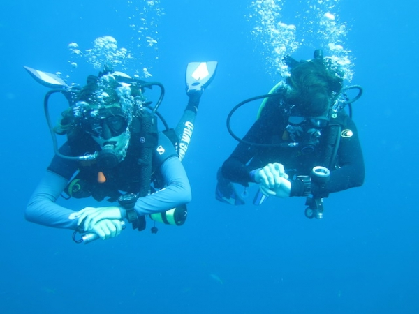 Diving the Deeper Depths of the Ocean