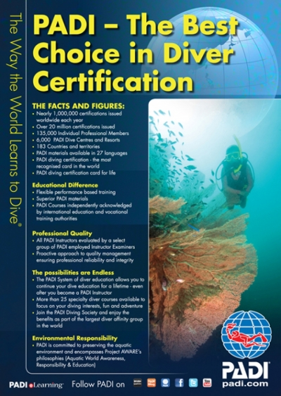 A Course in Diving and Life : DM Training at Sunshine Divers